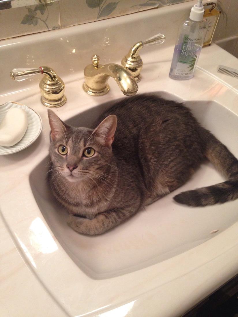 Sink Full-O-Ween