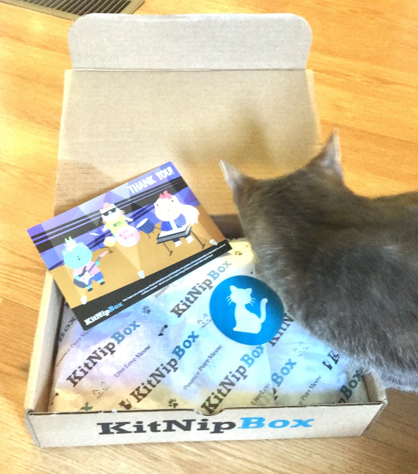 Weeny Opens his KitNipBox!
